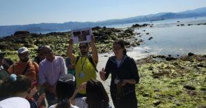 No verán Moaña é máis que sol e praia: volven os roteiros turísticos de balde